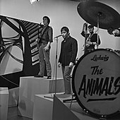 the animals - wikipedia