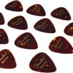 Krieger joue avec des médiators Fender médium