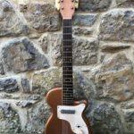 Mike Campbell joue avec une Harmony Stratotone - ebay